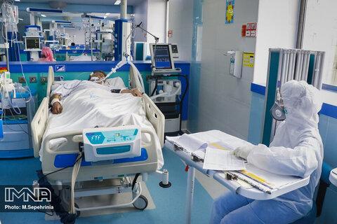 تصویر آمار جدید مبتلایان کرونا در کاشان در ۱۷ تیر