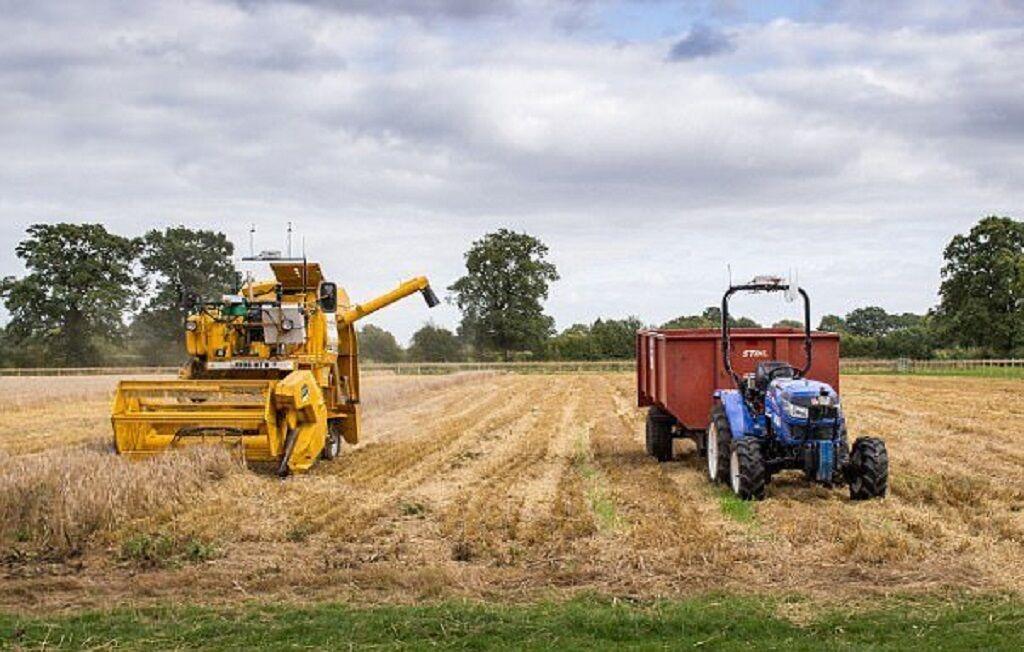 آموزش و پرورش کاشان در رشته کشاورزی مهارتآموز میپذیرد