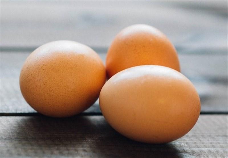 ابراز نگرانی تولیدکنندگان مرغ و تخممرغ در کاشان از کمبود نهاده/ قطعا در زمستان با مشکل برخورد میکنیم