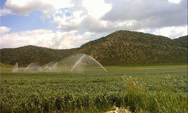 کیفیت پایین آب کاشان مانع تجهیز اراضی به آبیاری نوین است