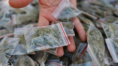 تصویر دستگیری باند ۵ نفره توزیع ماده مخدر گل در کاشان