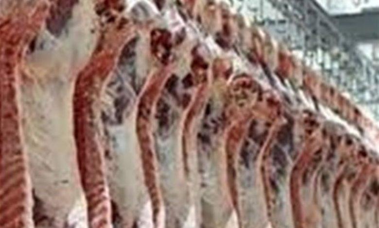 پرواز قیمت گوشت قرمز در کاشان؛ چرا مسئولان نظارت نمیکنند؟