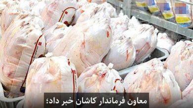تصویر آغاز توزیع مرغ با نرخ دولتی کیلویی ۲۱۵۰۰ تومان از امروز در کاشان
