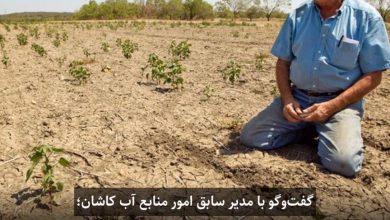 تصویر کشاورزی کاشان از حالت سنتی خارج نشود طی چند سال آینده از بین خواهد رفت