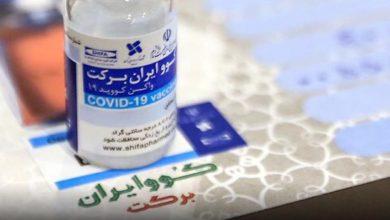 تصویر ۲۰۵۰ دوز واکسن کووایران برکت به منطقه کاشان اختصاص یافت
